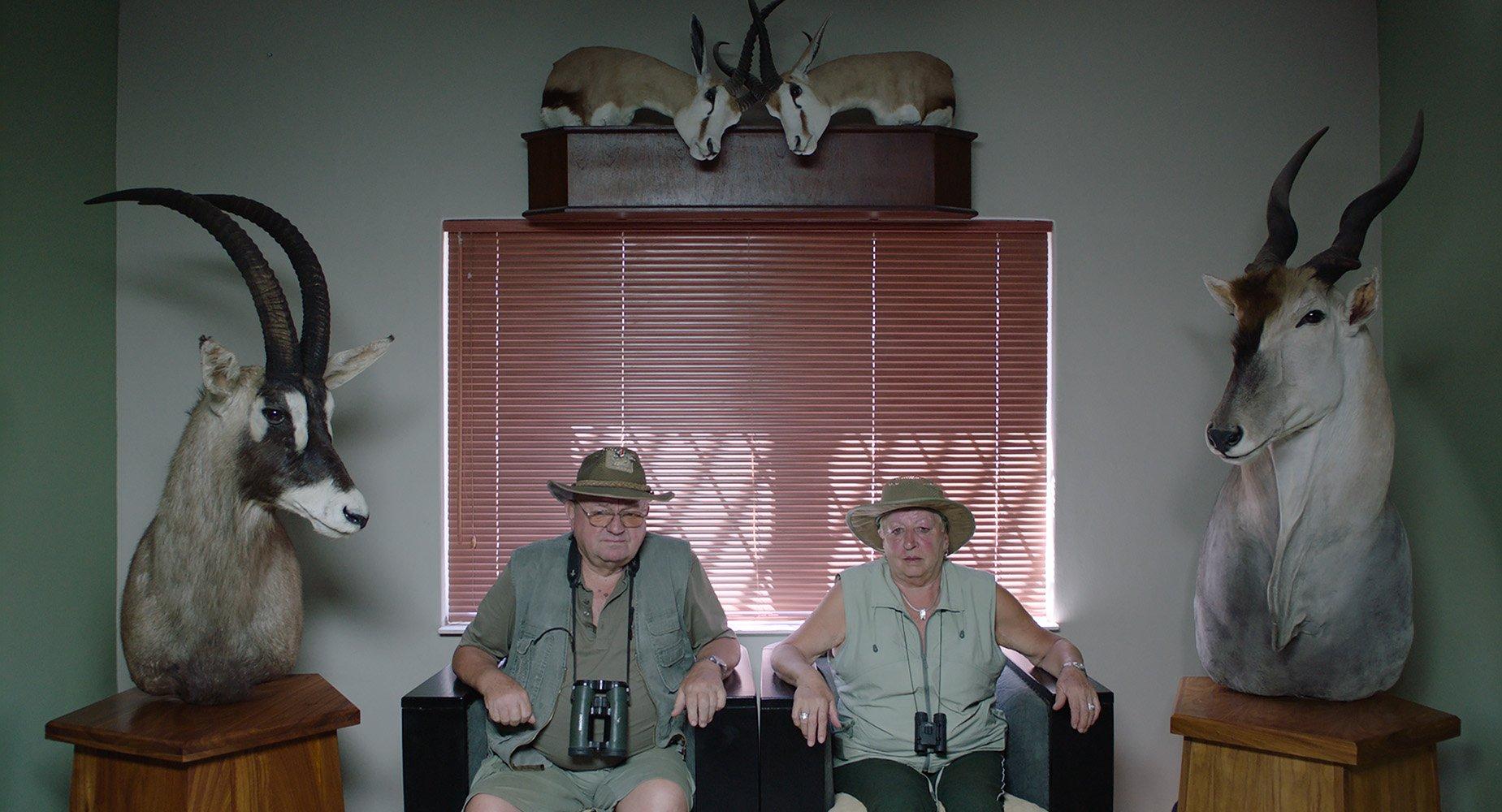 Critica Safari