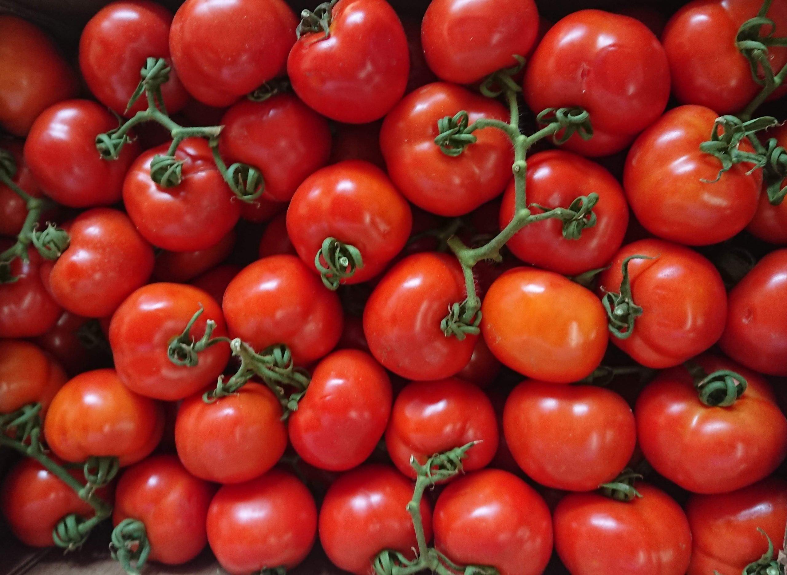 Tomate – O fruto era considerado venenoso e usado para feitiçaria